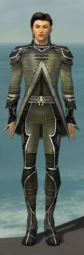 Elementalist Shing Jea Armor M gray front.jpg