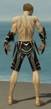 Necromancer Elite Sunspear Armor M gray arms legs back.jpg