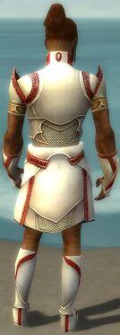Paragon Asuran Armor M dyed back.jpg