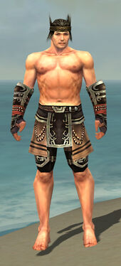 Warrior Ancient Armor M gray arms legs front.jpg