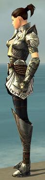 Warrior Deldrimor Armor F gray side.jpg
