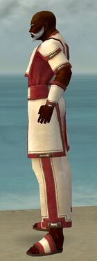 Monk Sacred Armor M dyed side.jpg