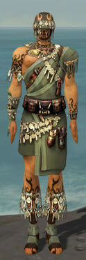 Ritualist Canthan Armor M gray front.jpg