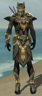 Ritualist Elite Kurzick Armor M gray front.jpg
