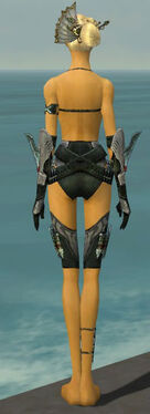 Assassin Imperial Armor F gray arms legs back.jpg