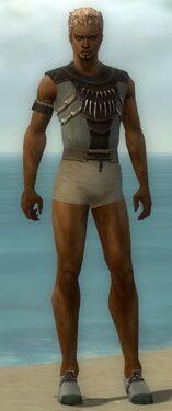 Dervish Primeval Armor M gray chest feet front.jpg