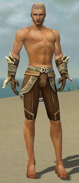 Ranger Asuran Armor M gray arms legs front.jpg