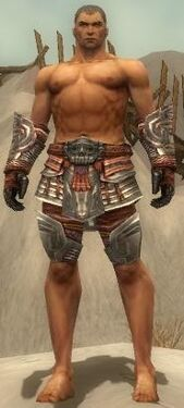 Warrior Asuran Armor M gray arms legs front.jpg