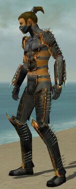 Assassin Exotic Armor M gray side.jpg