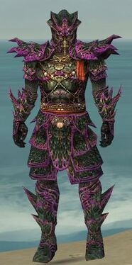 Warrior Elite Luxon Armor M dyed front.jpg