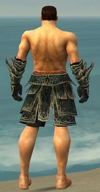 Warrior Elite Luxon Armor M gray arms legs back.jpg