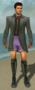 Mesmer Elite Enchanter Armor M gray chest feet front.jpg