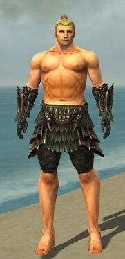 Warrior Elite Dragon Armor M gray arms legs front.jpg