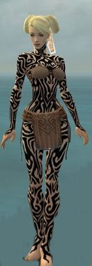 Monk Flowing Armor F dyed front.jpg