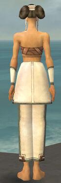 Monk Sacred Armor F gray arms legs back.jpg