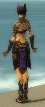 Ritualist Monument Armor F dyed back.jpg