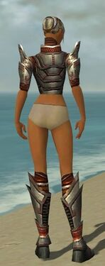Warrior Asuran Armor F gray chest feet back.jpg