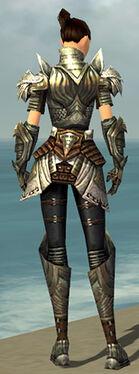 Warrior Deldrimor Armor F gray back.jpg