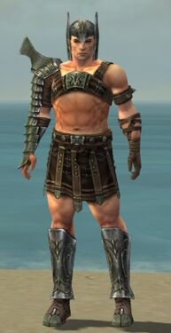 Warrior Elite Gladiator Armor M gray front.jpg
