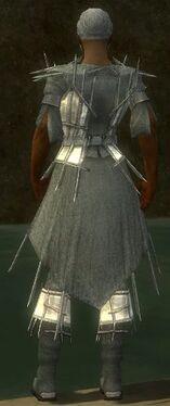 Elementalist Primeval Armor M gray chest feet back.jpg