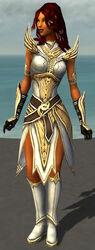 Hayda Armor Brotherhood Front.jpg