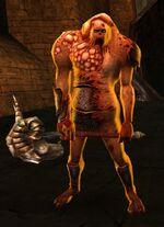 The Afflicted Tamaya.jpg