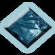 GGI badge 5