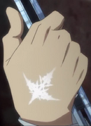 Shuu's Power of the King mark clear view.png