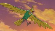 Birdy in the Sky (Seed HD Ep28)