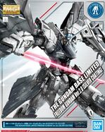 MG Freedom Gundam Ver. 2.0 Silver Coating