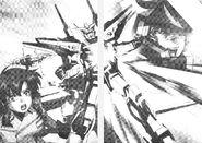 Gundam SEED DESTINY Novel RAW v5 290-291