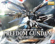 MG Freedom Gundam Extra Finish