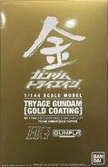 HG Try Age Gundam -Gold Coating-
