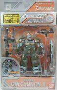 MSiA rgc83 p01 Asian