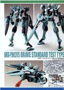HG00 Brave Standard Test Type