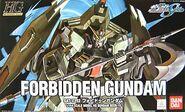 Hg seed-10 forbidden gundam