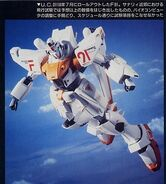 F91 Roll Out Color