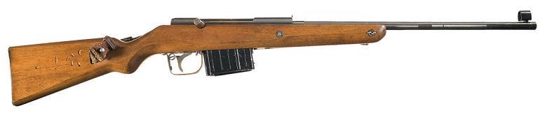 Volksgewehr