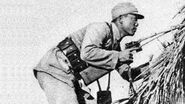 Rare Chinese Weapons ( Second Sino-Japanese Conflict )