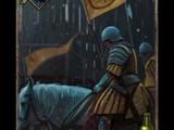 Rycerz z Kaedwen