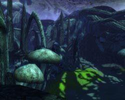 Petrified arena scenic.jpg