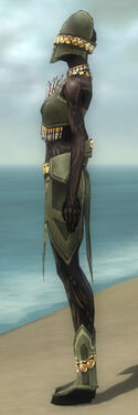 Ritualist Elite Kurzick Armor F gray side.jpg