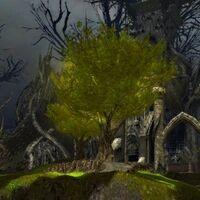 The Eternal Grove.jpg