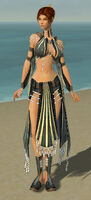 Elementalist Sunspear Armor F gray front.jpg