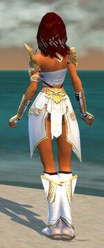 Hayda Armor Shining Blade Back.jpg