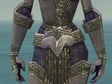 Warrior Platemail armor