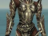 Warrior Elite Kurzick armor