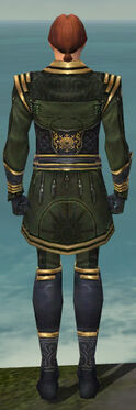 Mesmer Sunspear Armor M gray back.jpg