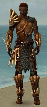 Ranger Elite Sunspear Armor M gray front.jpg