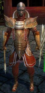 General Morgahn Starter Armor Front.JPG